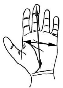 hand measure-twoway.jpg